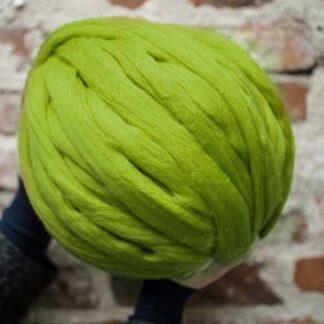 08 Verde primavaratic
